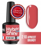 Lakier hybrydowy Hybrid Shine System - Color UV/LED - 210 APRICOT BRANDY