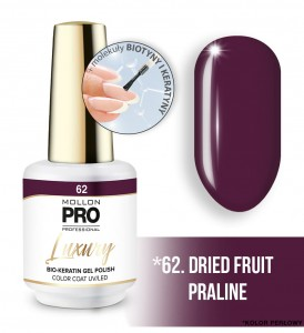 62. DRIED FRUIT PRALINE LUXURY GEL POLISH COLOR COAT - HYBRYDA ŻELOWA UV/LED Mollon PRO 8ml