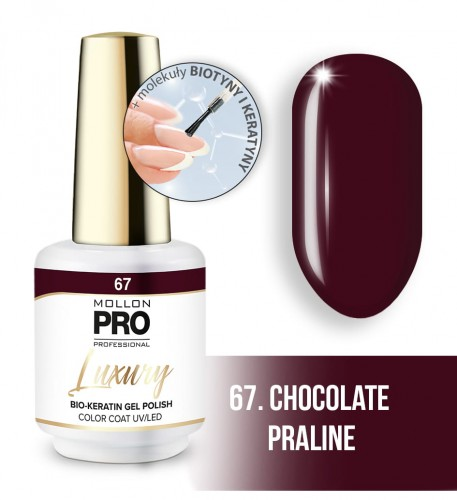 67_CHOCOLATE PRALINE.jpg